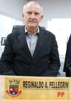 Reginaldo A Pellegrin